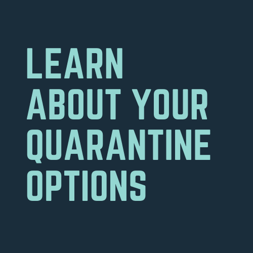Quarantine Options